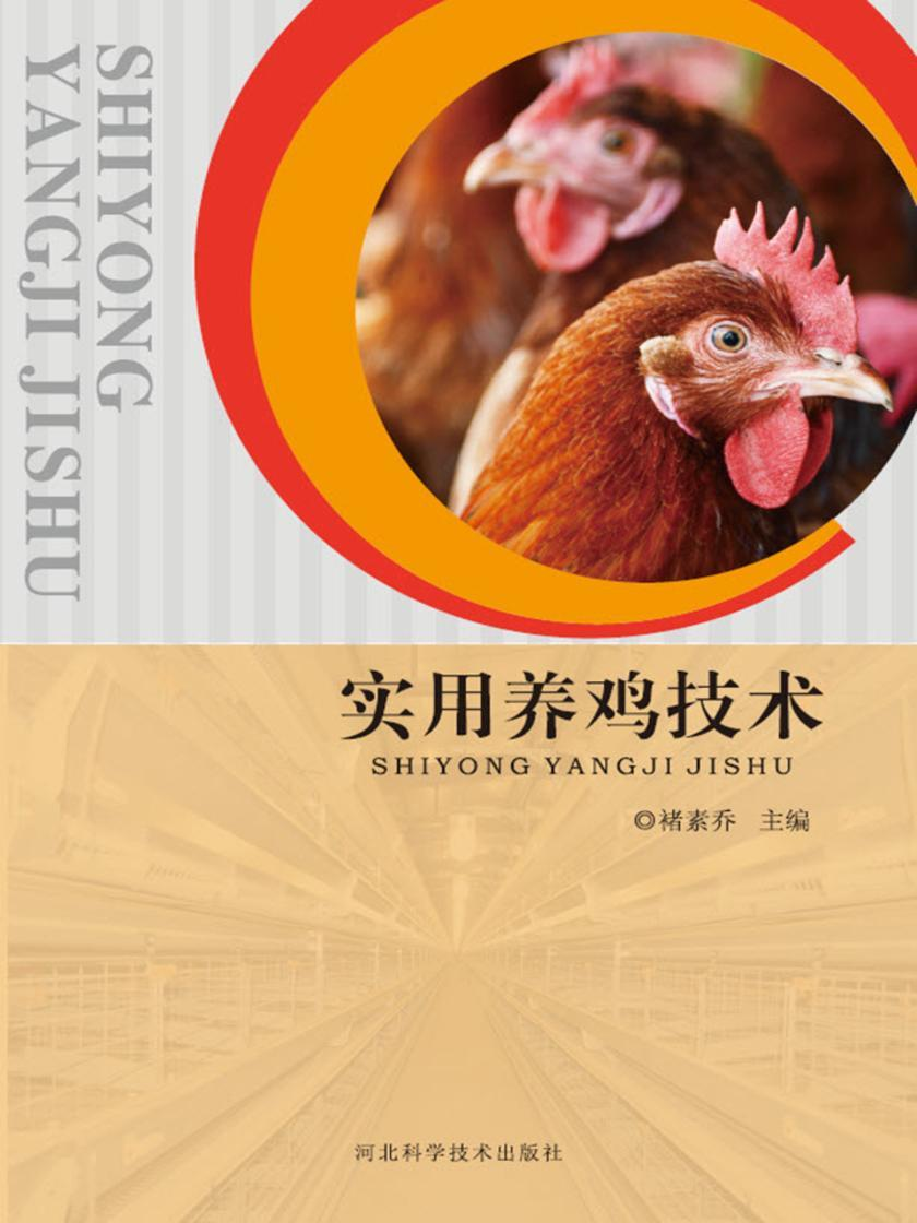 实用养鸡技术