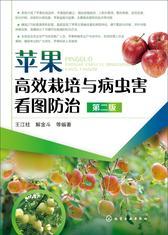苹果高效栽培与病虫害看图防治 第二版