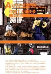 中国工人访谈录:二十四城记(试读本)