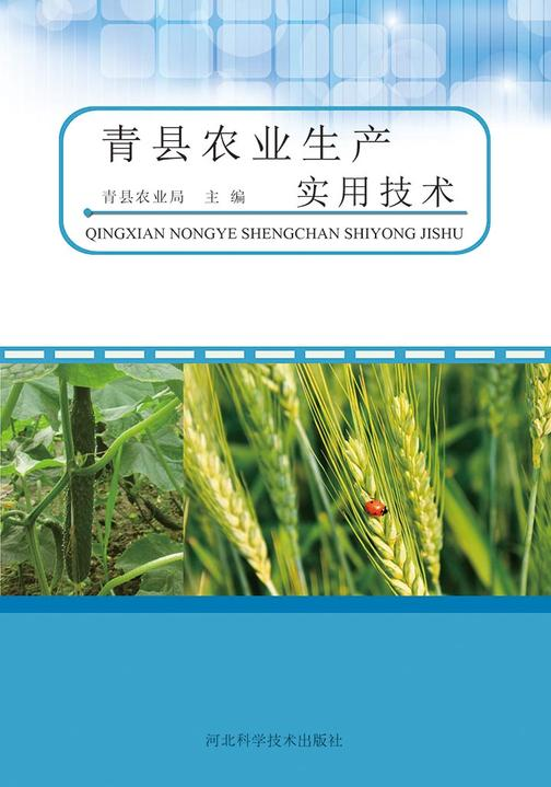 青县农业生产实用技术