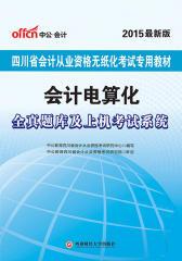 会计电算化·全真题库及上机考试系统