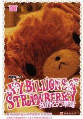 我的亿万草莓王子——爱上了灰姑娘(试读本)