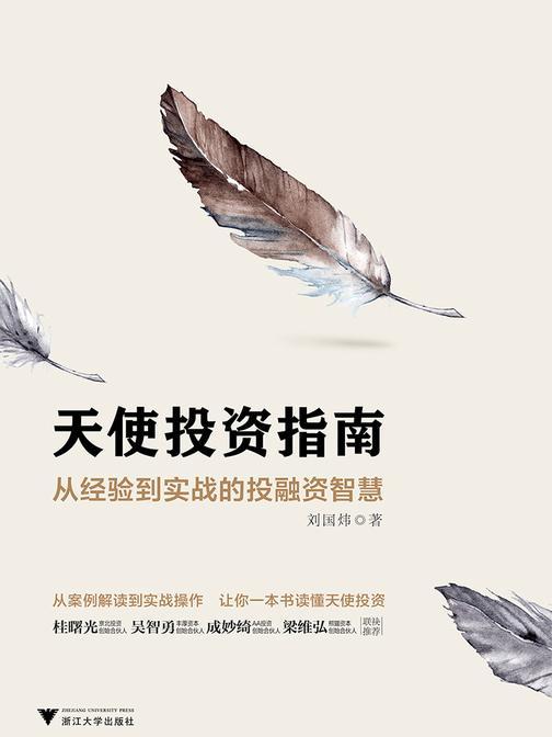 天使投资指南:从经验到实战的投融资智慧