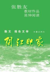 闽江映象(试读本)