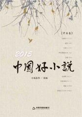 2015中国好小说·中篇卷