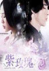 紫玫瑰(影视)
