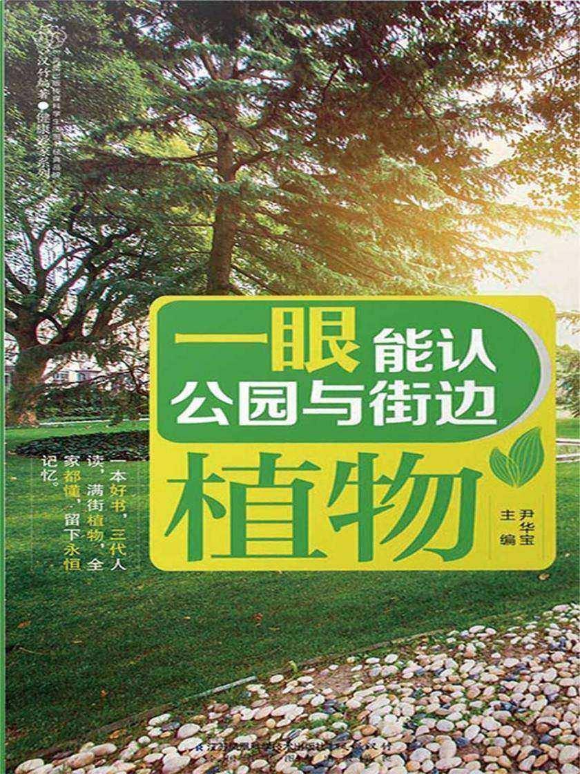 一眼能认公园与街边植物