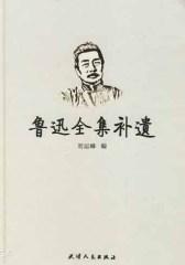 鲁迅全集补遗(仅适用PC阅读)