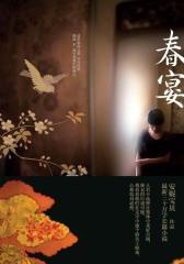 春宴(《莲花》之后历经五年酝酿,安妮宝贝最新30万字长篇小说)