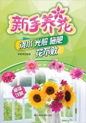 新手养花 : 浇水 光照 施肥 花不败