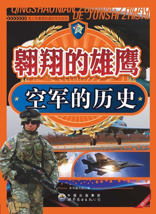 翱翔的雄鹰:空军的历史