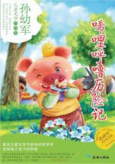 传世儿童文学名家典藏书系——唏哩呼噜历险记