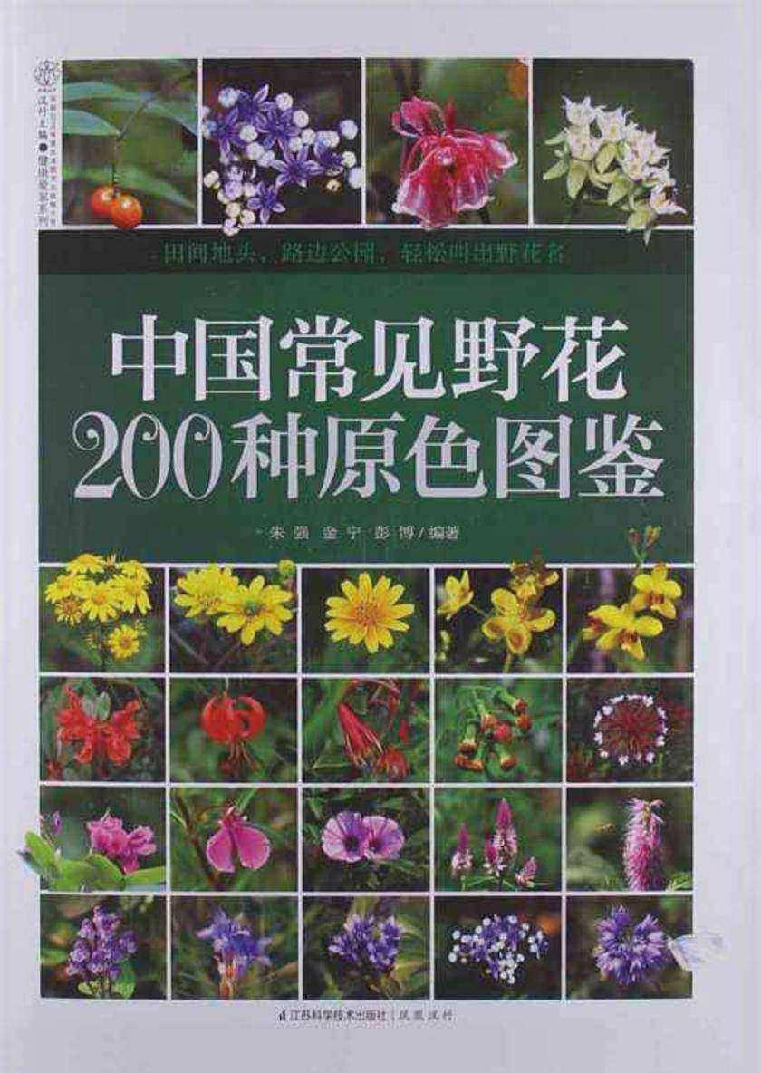 中国常见野花200种原色图鉴