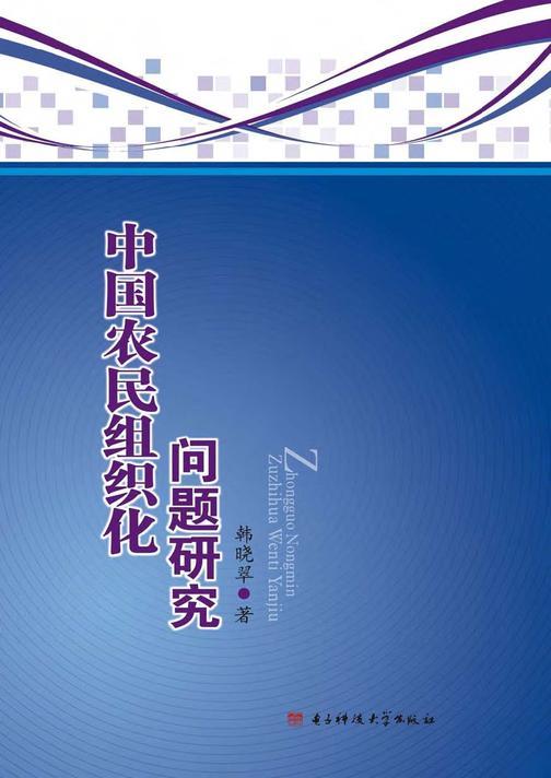 中国农民组织化问题研究