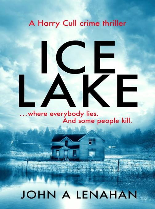 A gripping crime debut that keeps you guessing until the final page