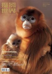 摄影世界 月刊 2011年04期(仅适用PC阅读)
