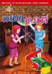 魔法小虎队:神秘的护身符