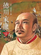 德川家康(新版)12:大坂风云