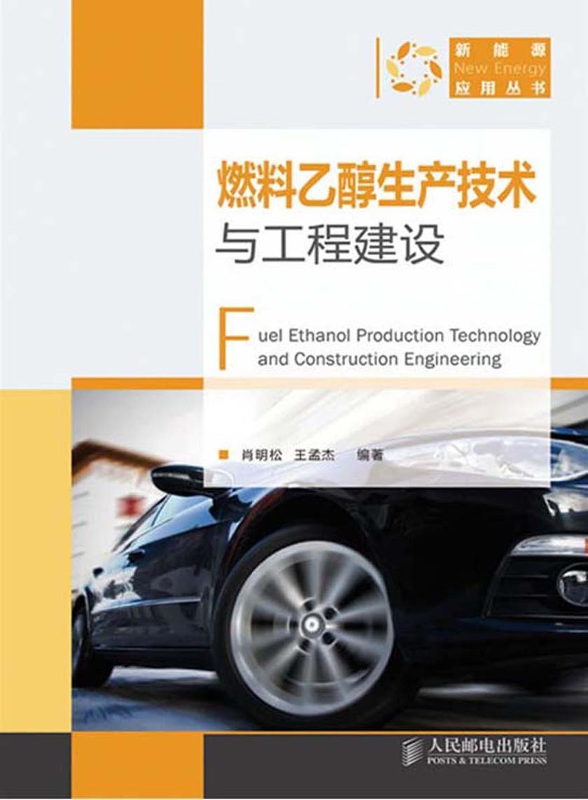 燃料乙醇生产技术与工程建设