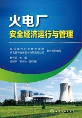 火电厂安全经济运行与管理