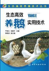 生态高效养鹅实用技术