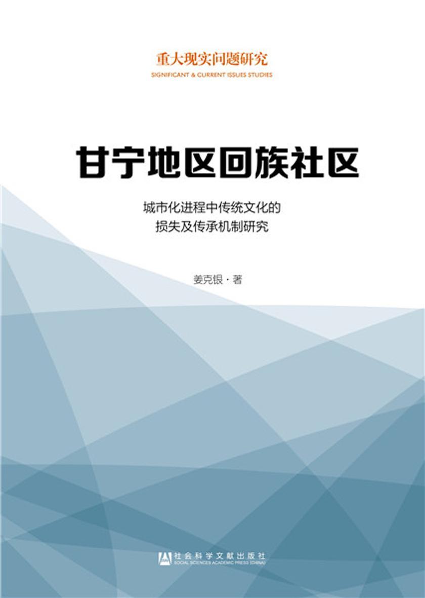 甘宁地区回族社区:城市化进程中传统文化的损失及传承机制研究