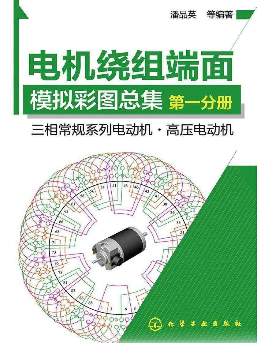 电机绕组端面模拟彩图总集.第一分册