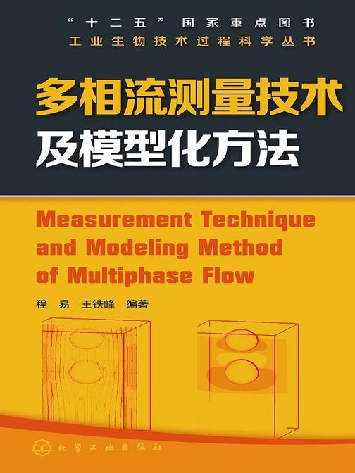 多相流测量技术及模型化方法