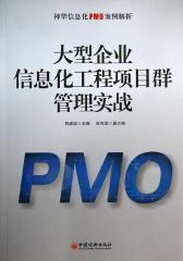 大型企业信息化工程项目群管理实战:神华信息化PMO案例解析
