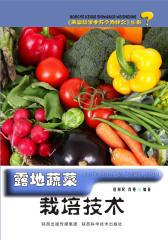 露地蔬菜栽培技术
