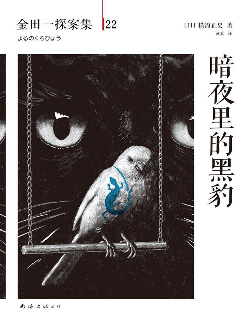 金田一探案集22:暗夜里的黑豹