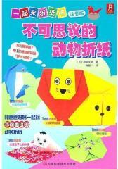一起来折纸吧:不可思议的动物折纸(试读本)
