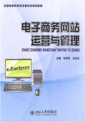 电子商务网站运营与管理(仅适用PC阅读)
