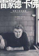 雷蒙德·卡佛短篇小说自选集(试读本)