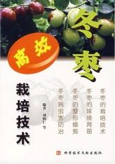 冬枣高效栽培技术