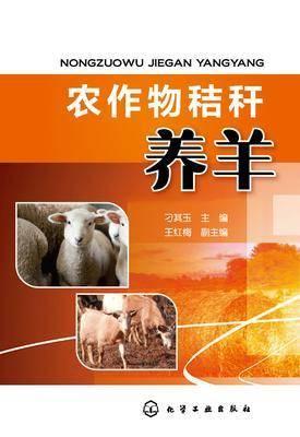 农作物秸秆养羊