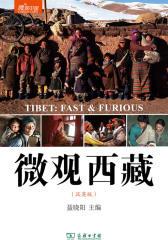 微观西藏(微观中国)