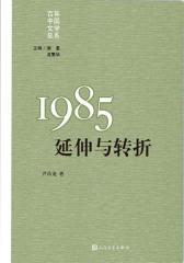 1985:延伸与转折