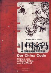 中国密码(试读本)