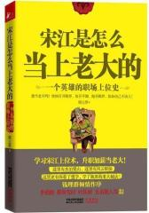 宋江是怎么当上老大的 ——一个英雄的职场上位史(试读本)