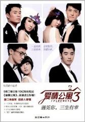 爱情公寓3:遇见你,三生有幸(仅适用PC阅读)