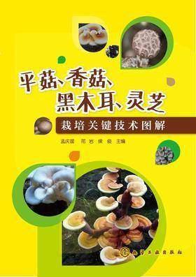 平菇、香菇、黑木耳、灵芝栽培关键技术图解