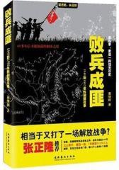 败兵成匪——1949到1952年的剿匪往事(试读本)