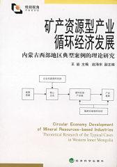 矿产资源型产业循环经济发展——内蒙古西部地区典型案例理论研究