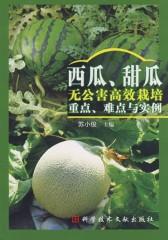 西瓜、甜瓜无公害高效栽培重点、难点与实例