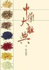 中药大辞典(中华实用方剂大典)