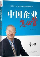 中国企业怎么管(试读本)