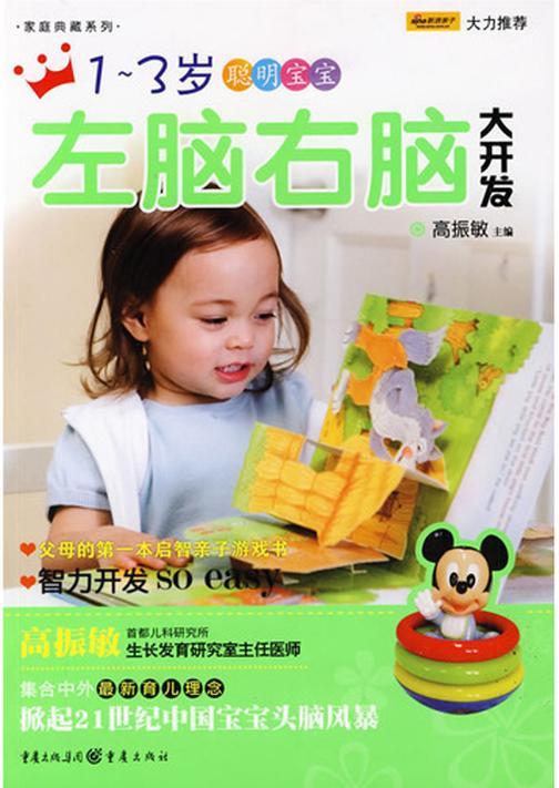 1~3岁聪明宝宝左脑右脑大开发