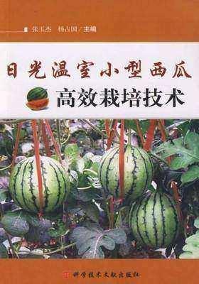 日光温室小型西瓜高效栽培技术