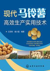 现代马铃薯高效生产实用技术